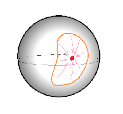 Loops can be contracted on a sphere